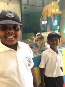 Grade 1 visit the Animal Anti-Cruelty League